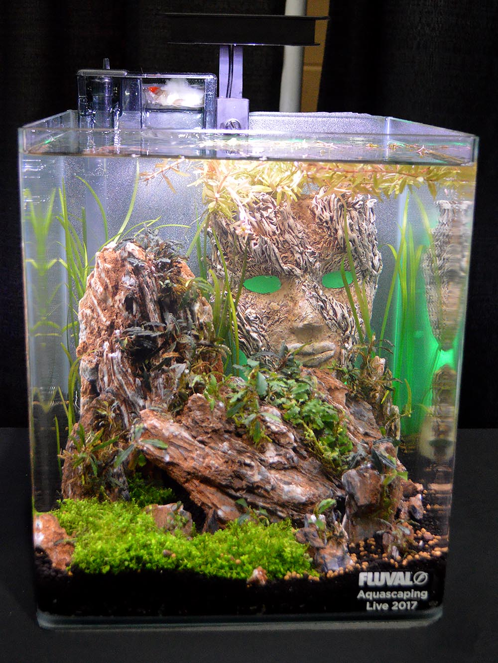 Aquascape by Sean Peck