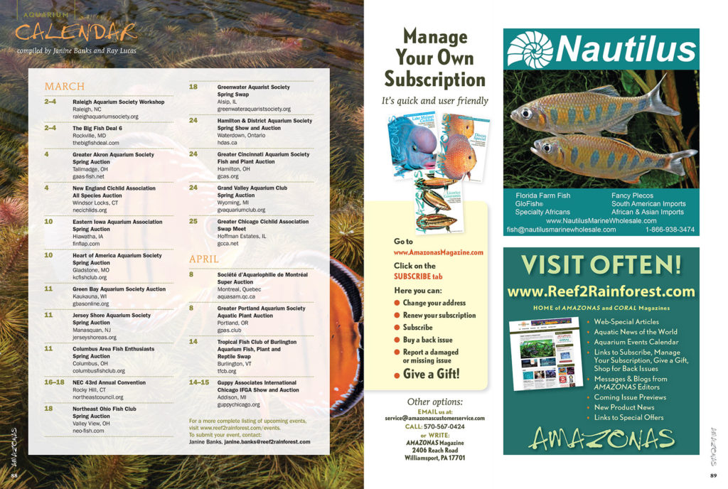 These events are not to be missed! Discover what's happening in the aquarium world through our print and online Aquarium Calendars. Have an event coming up? Send Janine Banks an email so we can let your fellow AMAZONAS readers know about it.