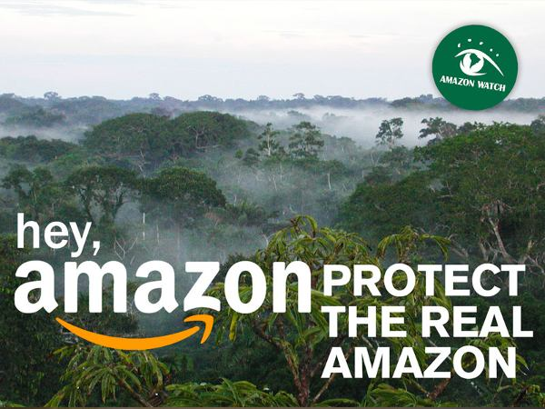 Hey Amazon, protect the real Amazon