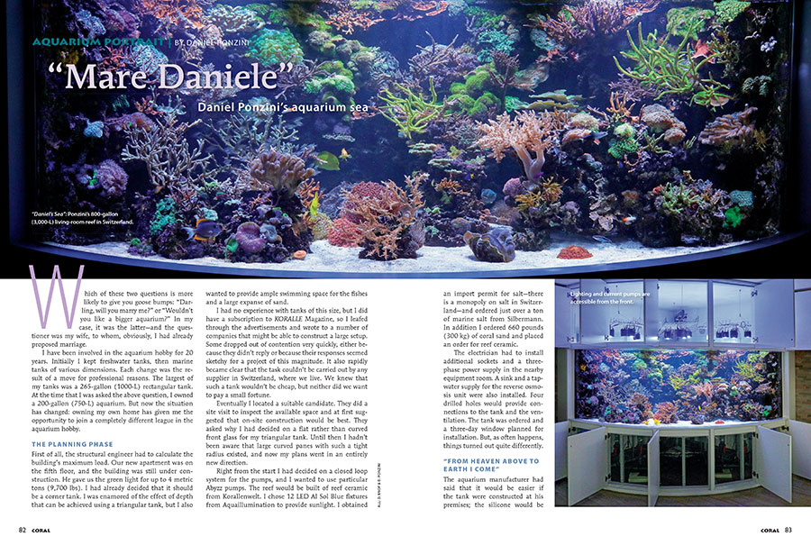 "What exactly does the installation and maintenance of an 800-gallon aquarium entail? Find out in ""Mare Daniele"", the story of Daniel Ponzini's Swiss aquarium, our latest Aquarium Portrait."