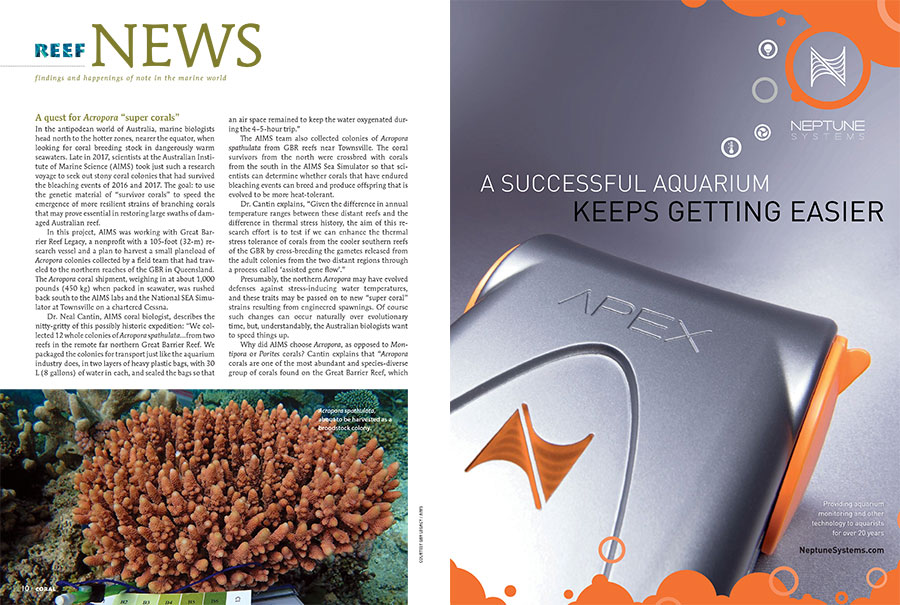 "A quest for Acropora ""super corals"", how bacteria aid digestion in Red Sea surgeonfishes, mathematically predisposed cutttlefish, the odd intersection of jellyfish protein and lasers, and a new genus of protozoa aptly named Cafeteria: all stories in the newest edition of CORAL Magazine's Reef News."