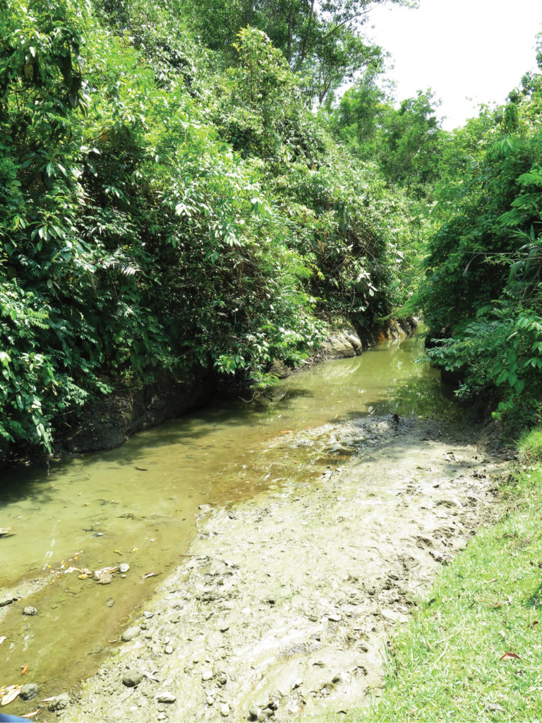 Domdomia stream, the type locality of Laubuka tenella, May 9th, 2015.
