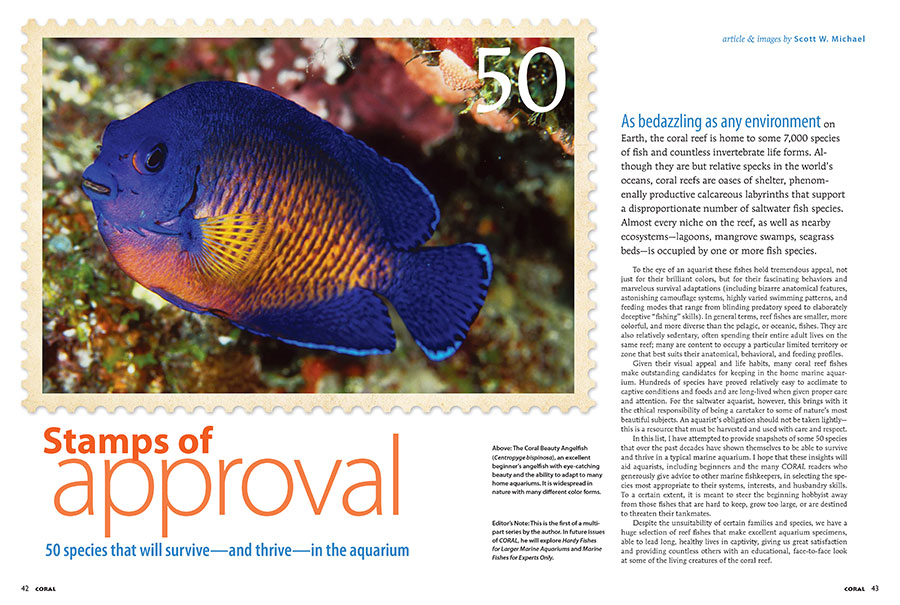 Already a hit among readers, Scott Michael's curated selection of 50 species that will survive—and thrive—in the aquarium, gets everyone's Stamps of Approval.