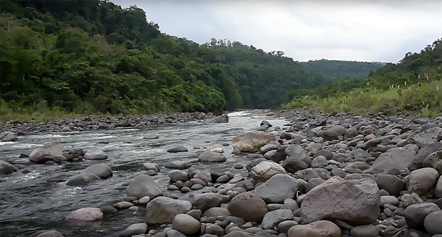 The Rio Marañon, primary headwaters of the Amazon River, as shared in a recent video from evolutionary biologist Nathan Lujan and Eddy Out Productions. Image credit: Eddy Out Productions