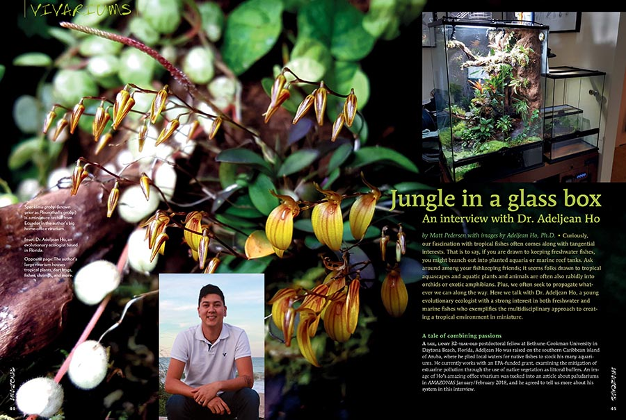 Jungle in a glass box - An interview with Dr. Adeljean Ho - July/August 2018 issue of AMAZONAS Magazine