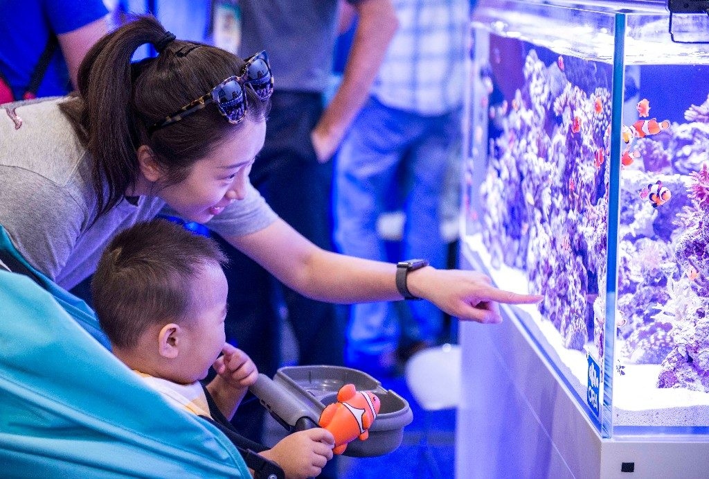 Family-friendly programming and activities for children will debut at the 2018 Marine Aquarium Conference of North America.