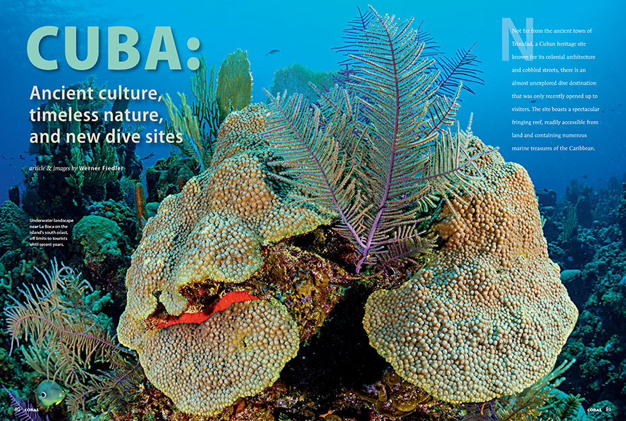 Americans can travel to Cuba...Americans can't travel to Cuba...maybe save yourself some headaches and dive into the pages of CORAL Magazine with Werner Fiedler as he brings you to some new dive sites in Cuba.