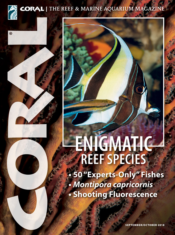 The cover of CORAL Magazine Volume 15, Issue 5 – ENIGMATIC REEF SPECIES – September/October 2018. On the cover: Zanclus cornutus being cleaned by Labroides dimidiatus in aquarium of Heinz Hartwig, 2017. D. Knop. In the background: Melithaea sp. sea fan. W. Fiedler.