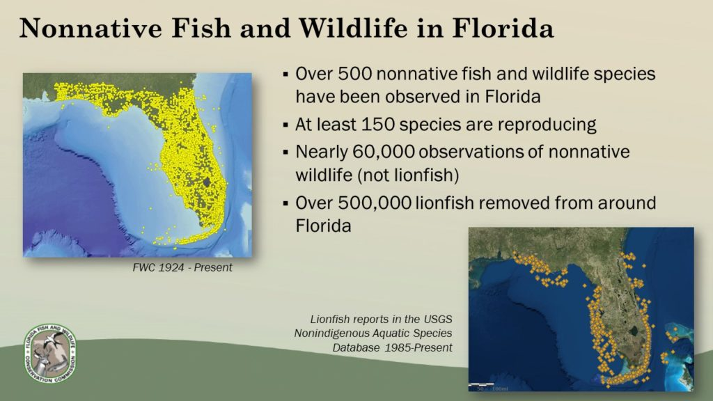 "Status of nonnative species in Florida. From the presentation ""Nonnative Species Overview and Proposed Draft Rules"""