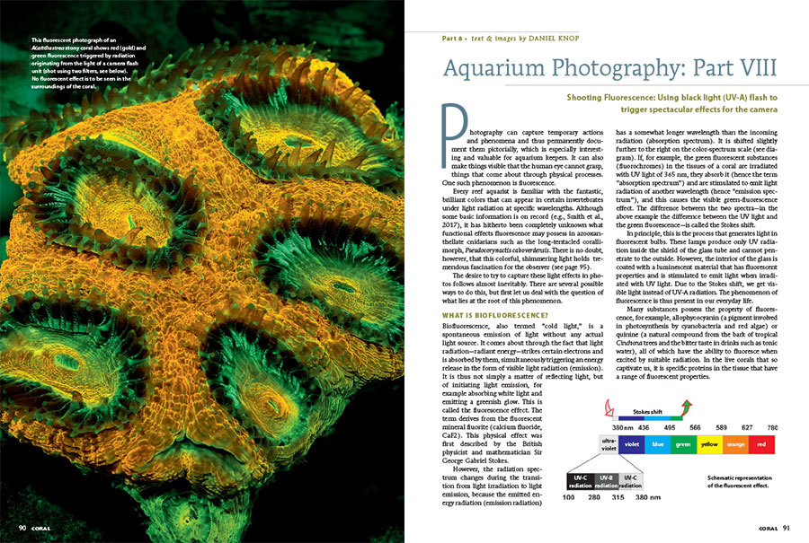 Daniel Knop's ongoing series covering aquarium photography brings us the latest approaches to capturing coral fluorescence using special UV-A flash equipment.