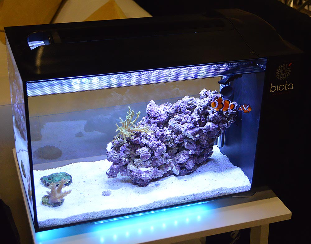 The typical all-in-one Biota Aquarium meant as an entry-level option for prospective marine aquarists.