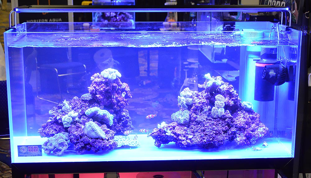 A mid-sized aquarium on display at the Ming Trading/Zetlight booth featured two bommies of Real Reef rock.