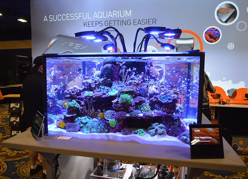 A view from the front: Neptune Systems' large and impressive reef aquarium display.