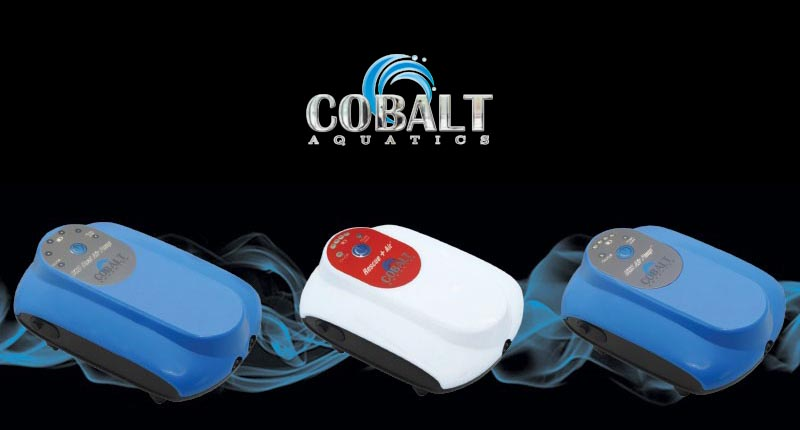 Cobalt's new line of DC USB rechargeable battery-powered air pumps may be the difference between success and disaster during a power outage.