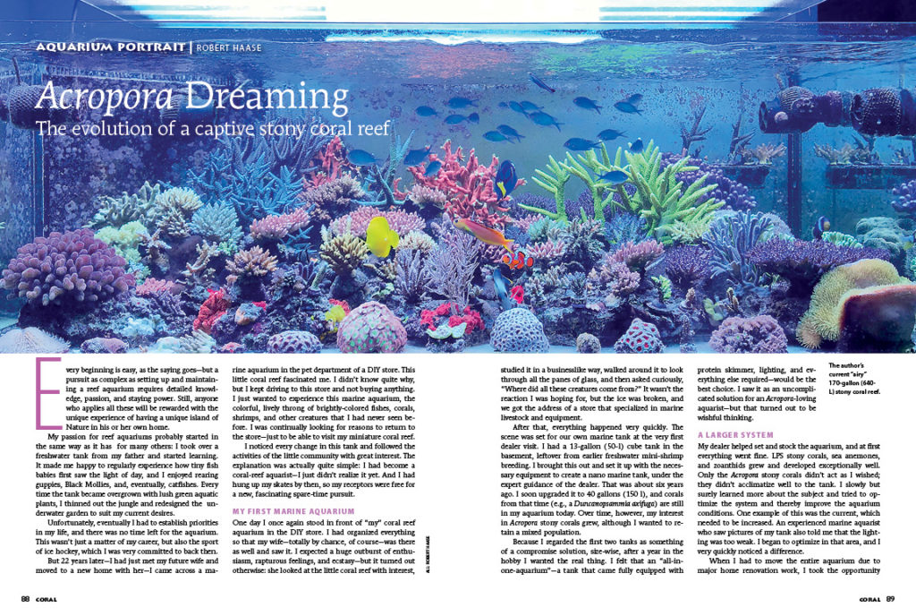 Experience the evolution of Robert Haase's captive stony coral reef in this issue's Aquarium Portrait: Acropora Dreaming.