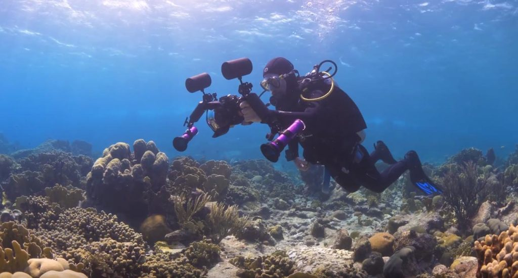 Many CORAL readers are also avid divers. If you're considering adding underwater photography and videography to your diving experience, Reef Patrol's new series of underwater filming tips will be incredibly helpful.