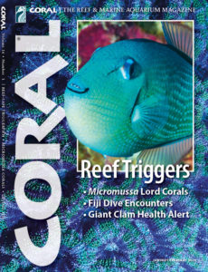 CORAL Magazine Volume 16, Issue 1 – REEF TRIGGERS – January/February 2019. Click to buy this issue.