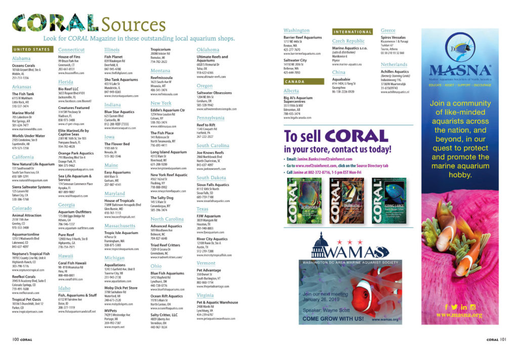 Have some extra holiday cash in your pockets to start off the New Year? Check out the very best local fish shops around the county in our Sources directory. If they're smart enough to carry CORAL Magazine in their shops, you know they value the same things that make you a CORAL reader! Bookmark the online list for your next fish shop road trip!