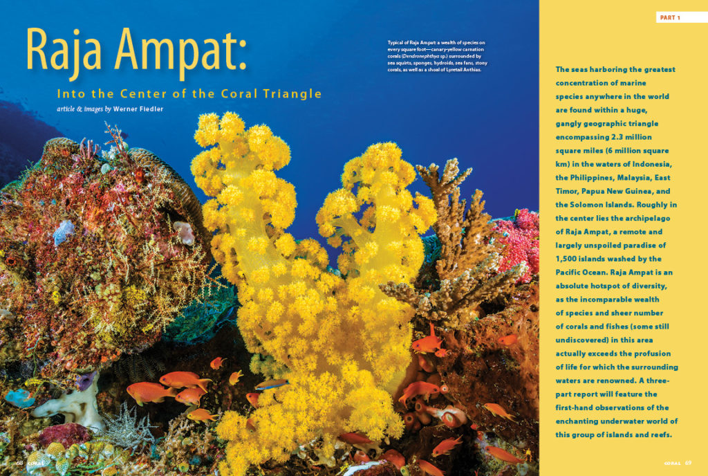 Werner Fiedler takes you on a journey to Raja Ampat, in the center of the Coral Triangle; the first installment of a 3-part series.