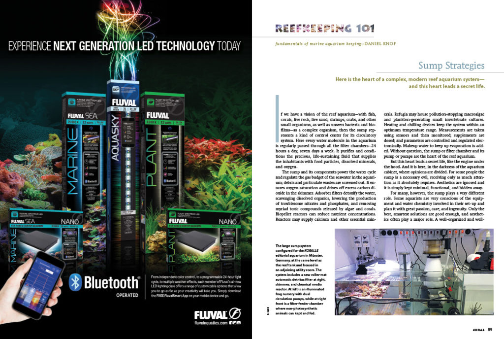 Your sump is the heart of a complex, modern reef aquarium system— and this heart leads a secret life. Daniel Knop illuminates these sump secrets in Reefkeeping 101.