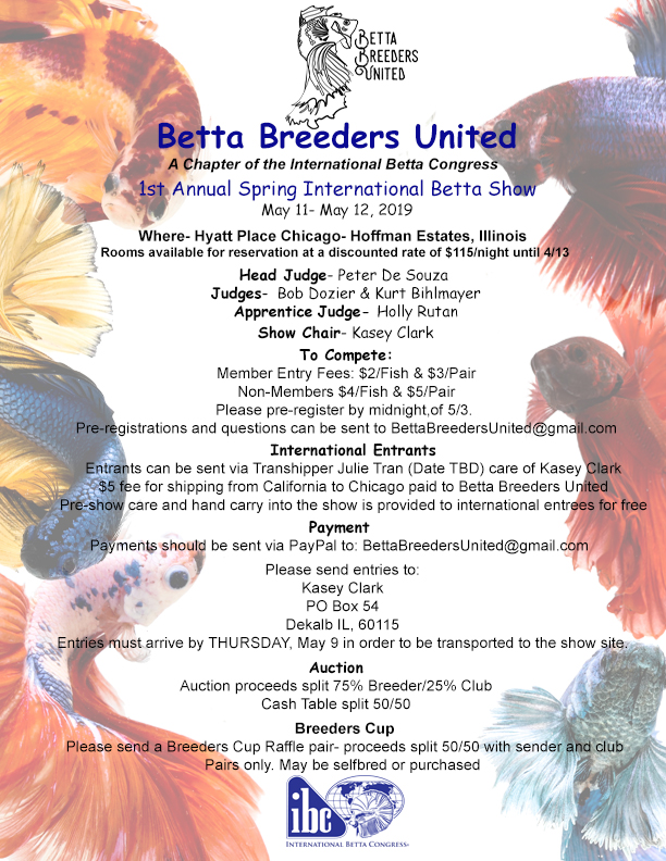 Betta Breeders United Forum