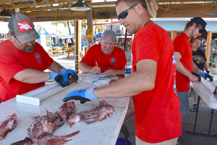 Staff tallying lionfish caught as part of the Emerald Coast Open. FWC photo by Amanda Nalley.