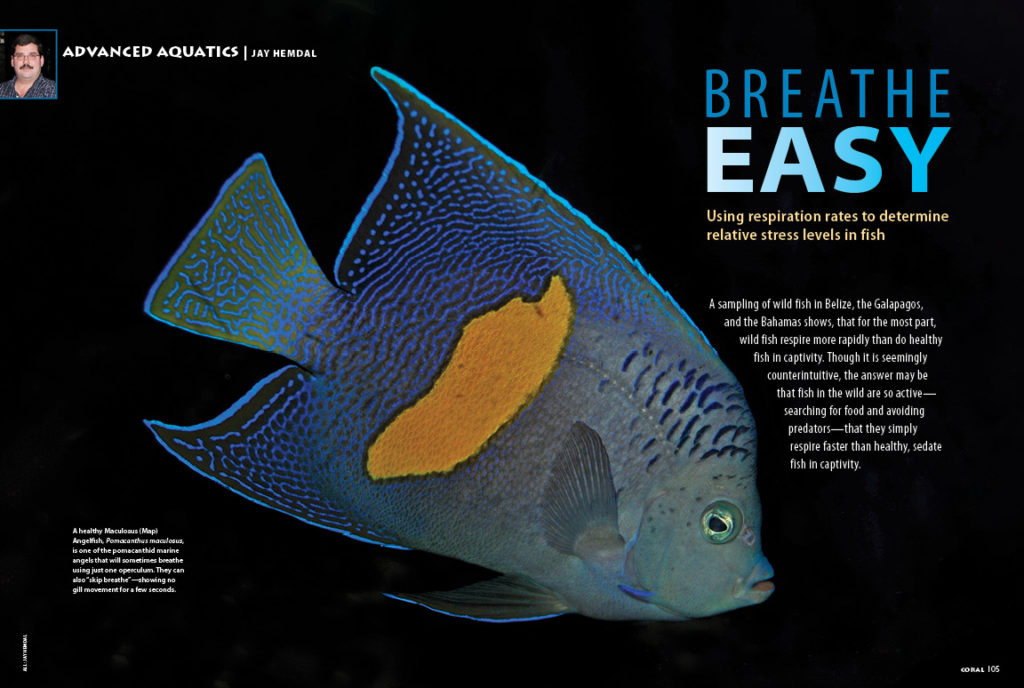 "What does it mean to say a fish is ""breathing rapidly,"" often one of the first indicators that something has gone awry? Author and veteran public aquarist Jay Hemdal eliminates the guesswork in our ADVANCED AQUATICS feature, ""Breathe Easy."""