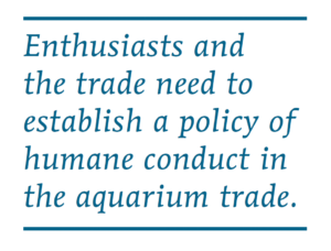 Enthusiasts and the trade need to establish a policy of humane conduct in the aquarium trade.
