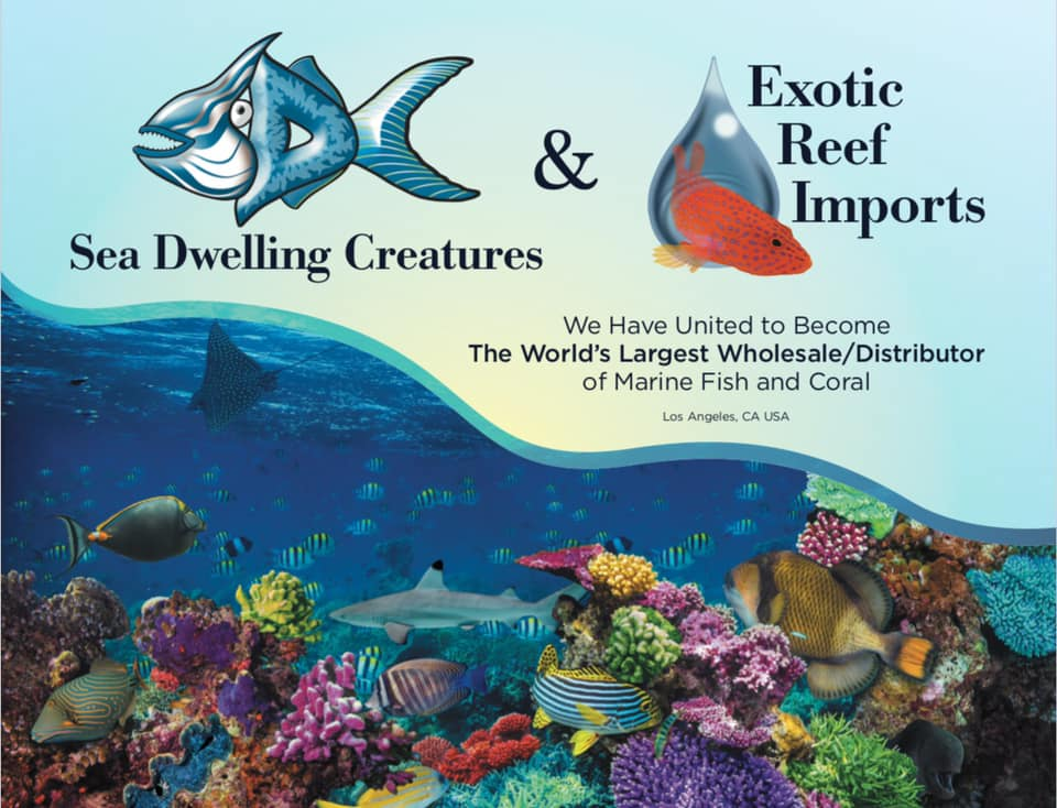 California-based marine aquarium livestock importers and wholesalers Sea Dwelling Creatuers and Exotic Reef Imports announce a planned merger.