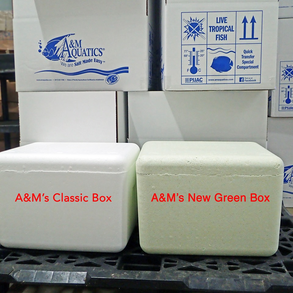A&M Aquatics' new shipping styros are a bit greener, both literally and figuratively.