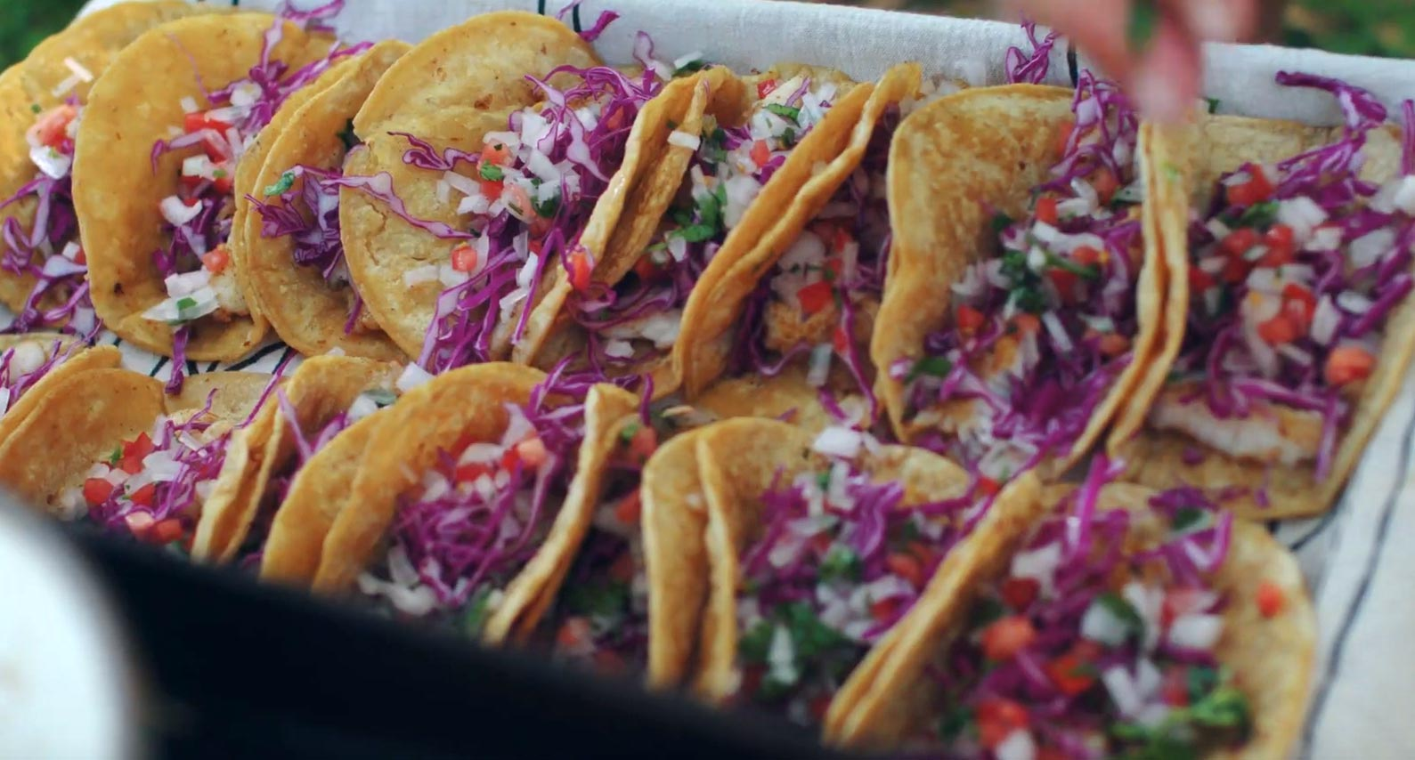 Getting hungry? Some delicious-looking lionfish tacos are served up!