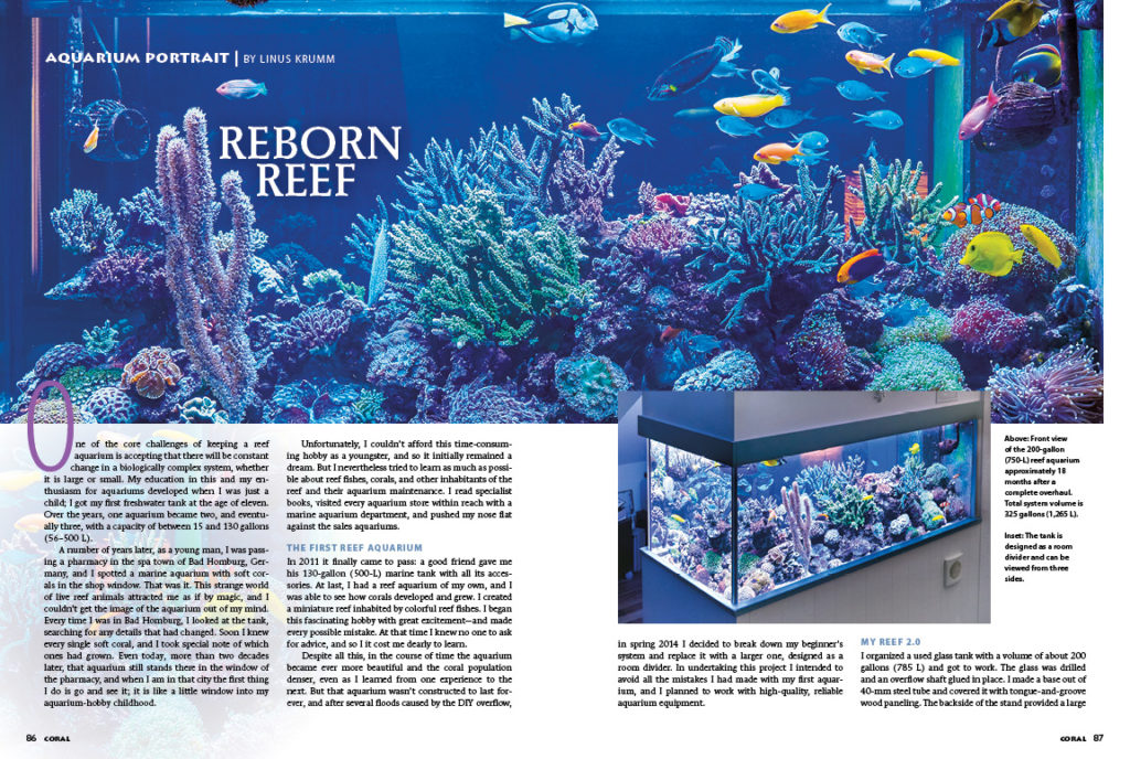 Get a glimpse into the stunning room divider reef tank of Linus Krumm in this issue's Aquarium Portrait.