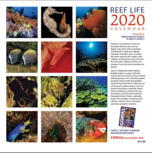 Reef Life 2020, a calendar for marine aquarists and coral reef enthusiasts from the publishers of CORAL Magazine.