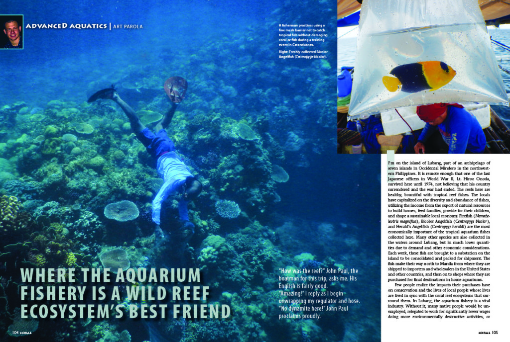 """Few people realize the impacts their purchases have on conservation and the lives of local people whose lives are lived in sync with the coral reef ecosystems that surround them,"" writes Art Parola in his report from the Philippines entitled ""Where the Aquarium Fishery is a Wild Reef Ecosystem's Best Friend."""
