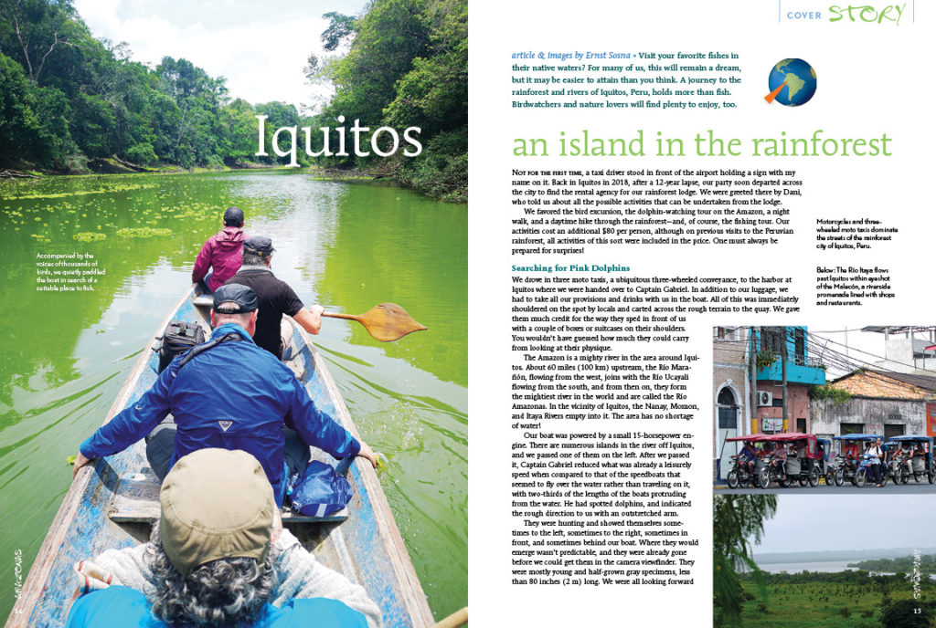 Visit your favorite fishes in their native waters? For many of us, this will remain a dream, but it may be easier to attain than you think. Join Ernst Sosna on an expedition launched from Iquitos, Peru.