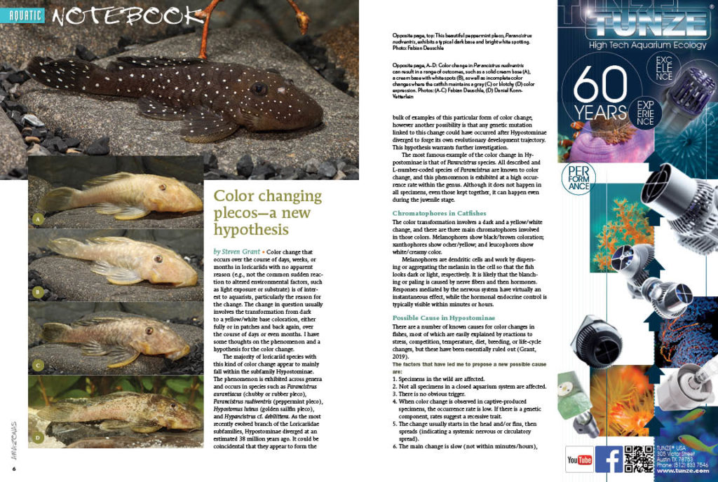 Aquatic Notebook is your first stop for concise stories of interest to aquarists. In this issue, Steven Grant puts forth a hypothesis for the underlying causes of color change in plecostomus, and Oliver Lucanus raises alarm over the ongoing damming of the Amazon's rivers, often causing serious environmental damage beyond that runs deeper than simply altering geography and river flows.