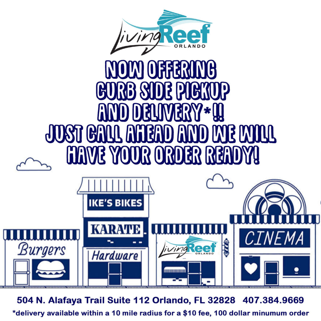 Living Reef Orlando adopts curbside pickup and delivery options.