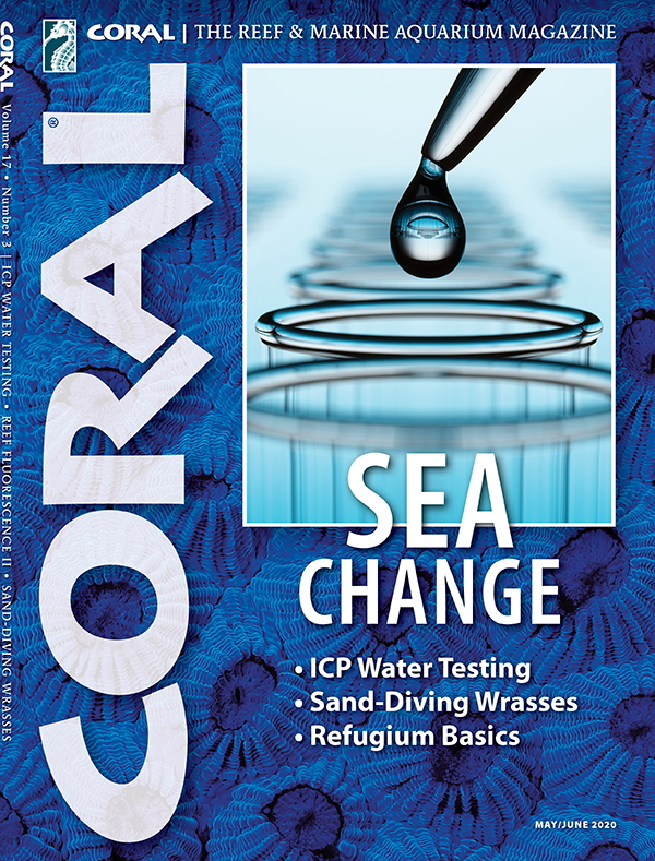 Cover of CORAL Magazine Volume 17, Issue 3 – SEA CHANGE – May/June 2020. On the cover: Water testing: Deliormanli/iStock. Background: Hexagon Brain Coral, Diploastrea heliopora, Werner Fiedler.