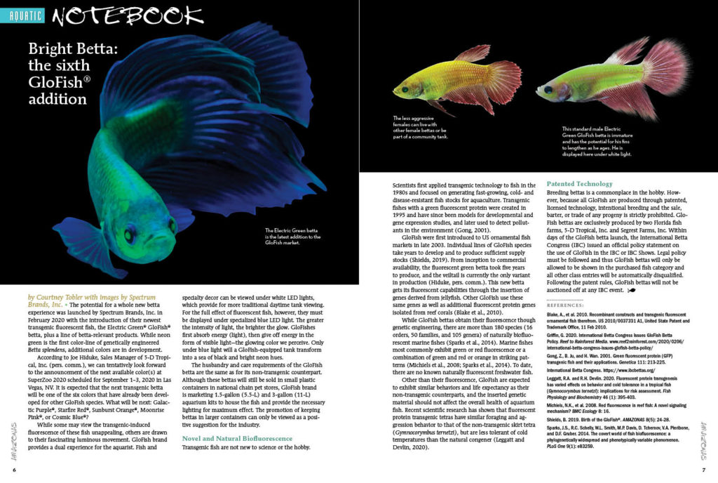 AQUATIC NOTEBOOK returns with our official reporting of Spectrum Brand's Glofish Betta release. Also in this installment, Goodeid Conservation at the Chester Zoo, rediscovery of a lost Hypostomus species, and our report from the 2020 Global Pet Expo in Orlando, Florida.