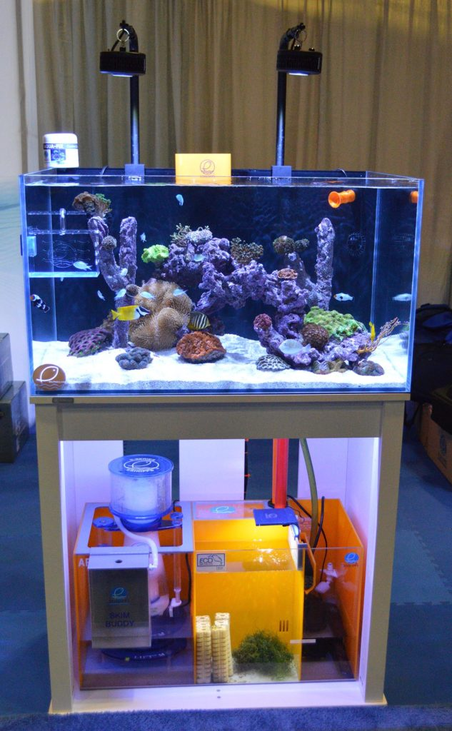 This display reef from Eshopps showcased their entire line of aquarium products!
