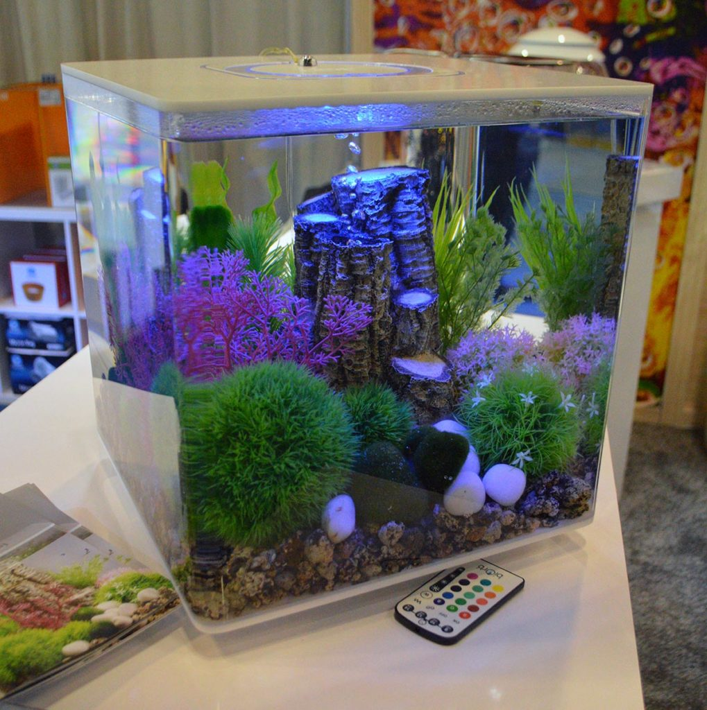 There was no shortage of aquariums on display by OASE Living Waters - shown here is a white biOrb CUBE. Check out our marine coverage for additional examples of the biOrb lineup!