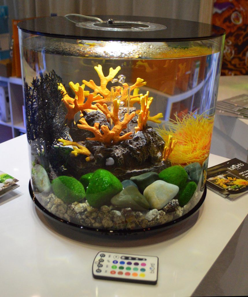 """OASE set up a few biOrb displays with """"marine themes"""". Shown here is the black TUBE style."""