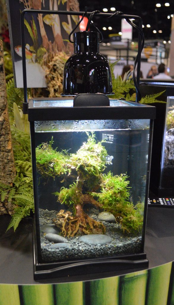 Zoo Med's new Dragon Bonsai Tree, here showing a single-trunk variant in a small aquarium.