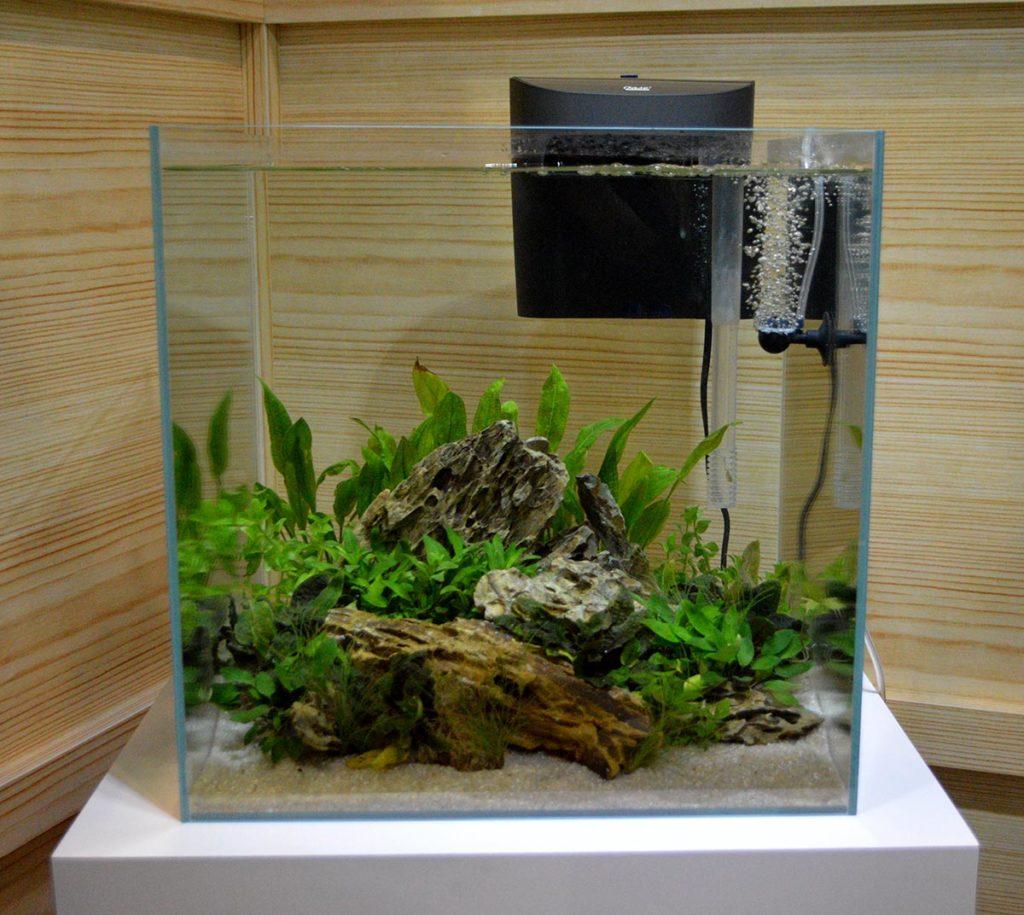 A beautifully aquascaped aquarium on display as part of the OASE Indoor Aquatics display.