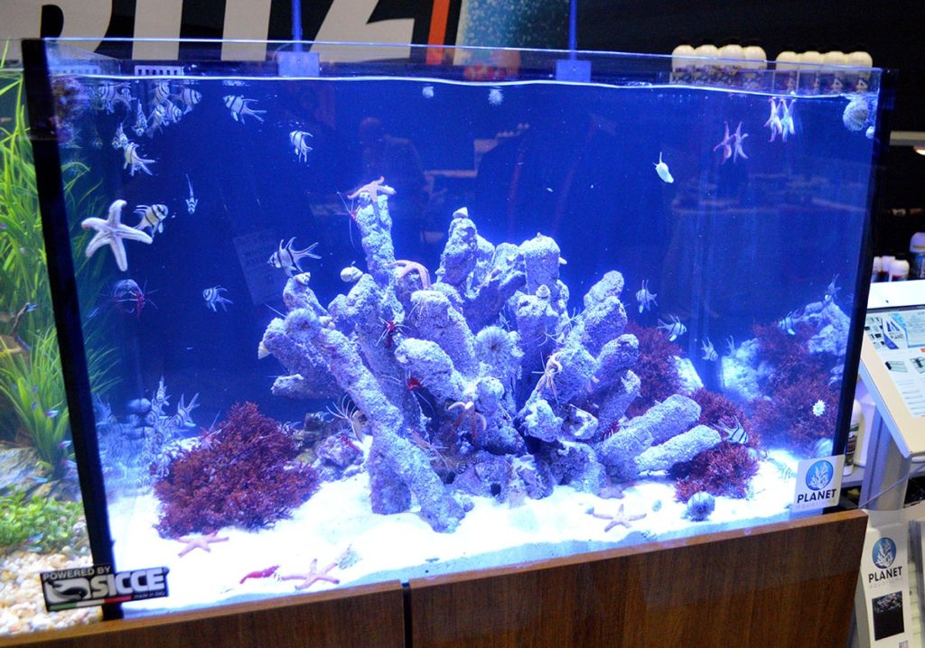 The marine side was one of the more unique marine aquascapes seen at the show.