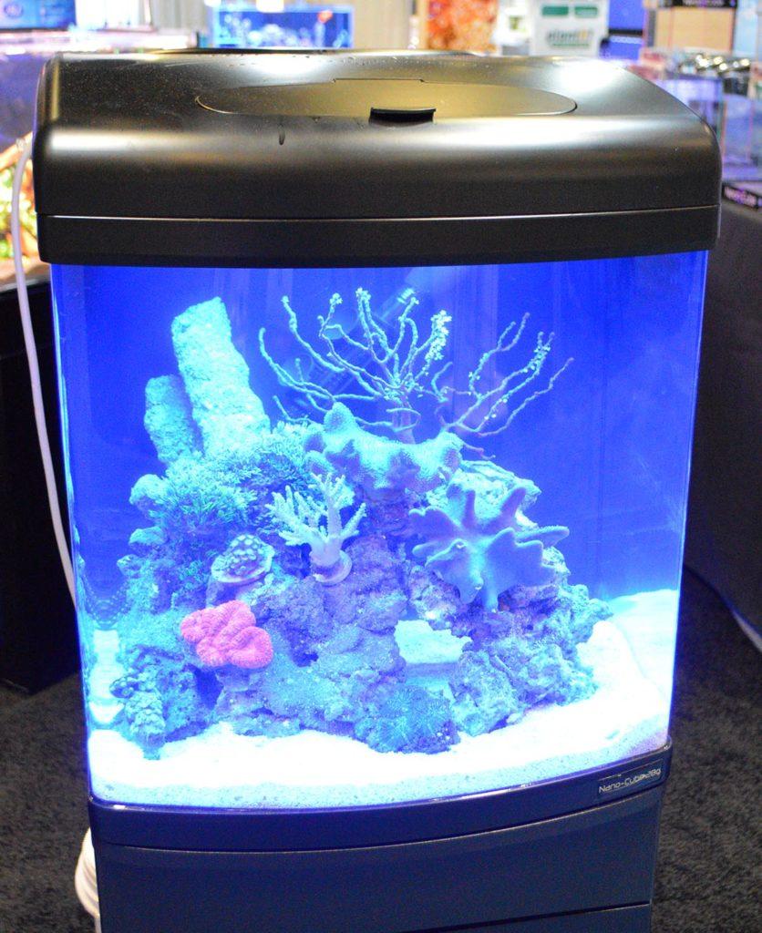 JBJ's classic Nano-Cube, set up as a reef aquarium.