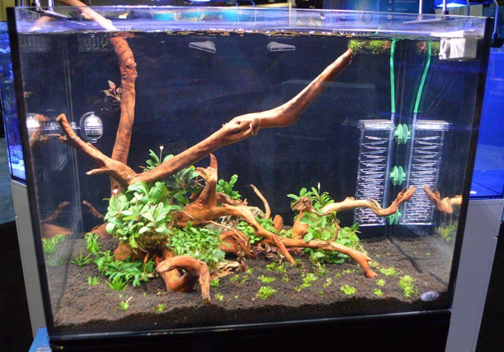 An aquascaped aquarium in the JBJ display.