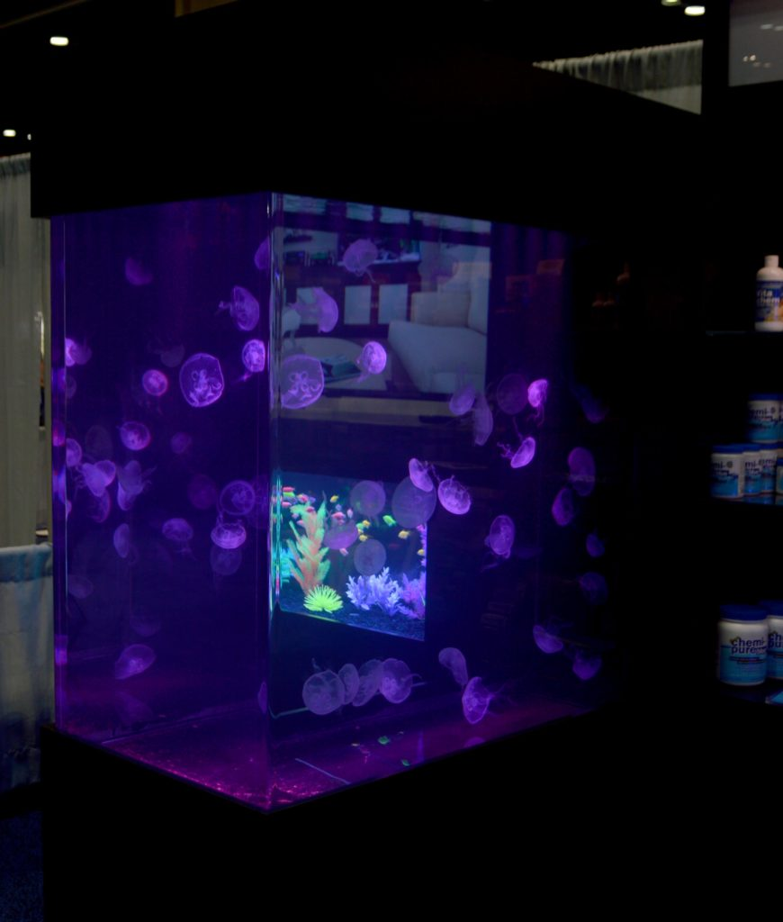 Under the Boyd Enterprises umbrella, jellyfish tanks both big and small come to the home aquarist. Reef Aquaria Design showcased this large scale display.