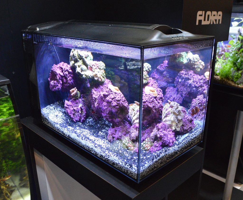 Fluval's 13.5 gallon EVO marine aquarium was on display. It is viewable from three sides, effectively a mini/desktop peninsula aquarium.
