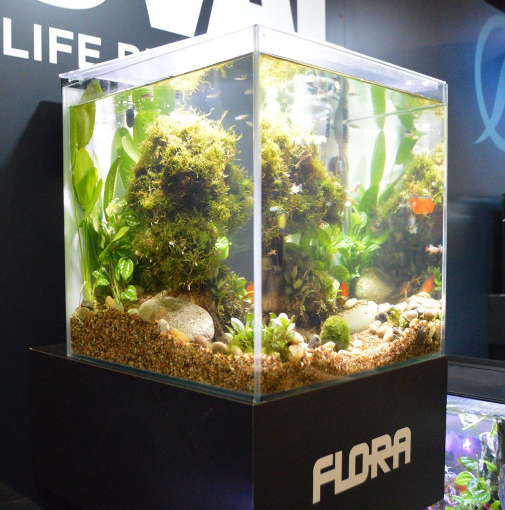 An example of Fluval's FLORA line of aquariums.